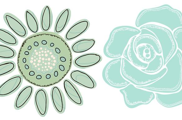 mint green flower clipart clip art on creative