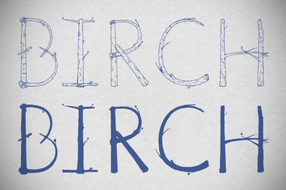 Birch Is Right Here