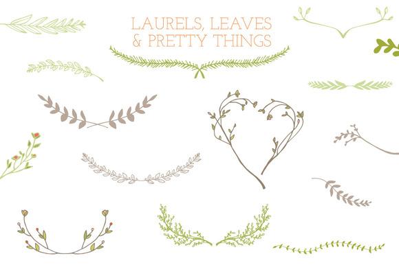 Laurel Frames Leaves And Stems