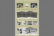 Vintage Facebook Timeline M-Graphicriver中文最全的素材分享平台