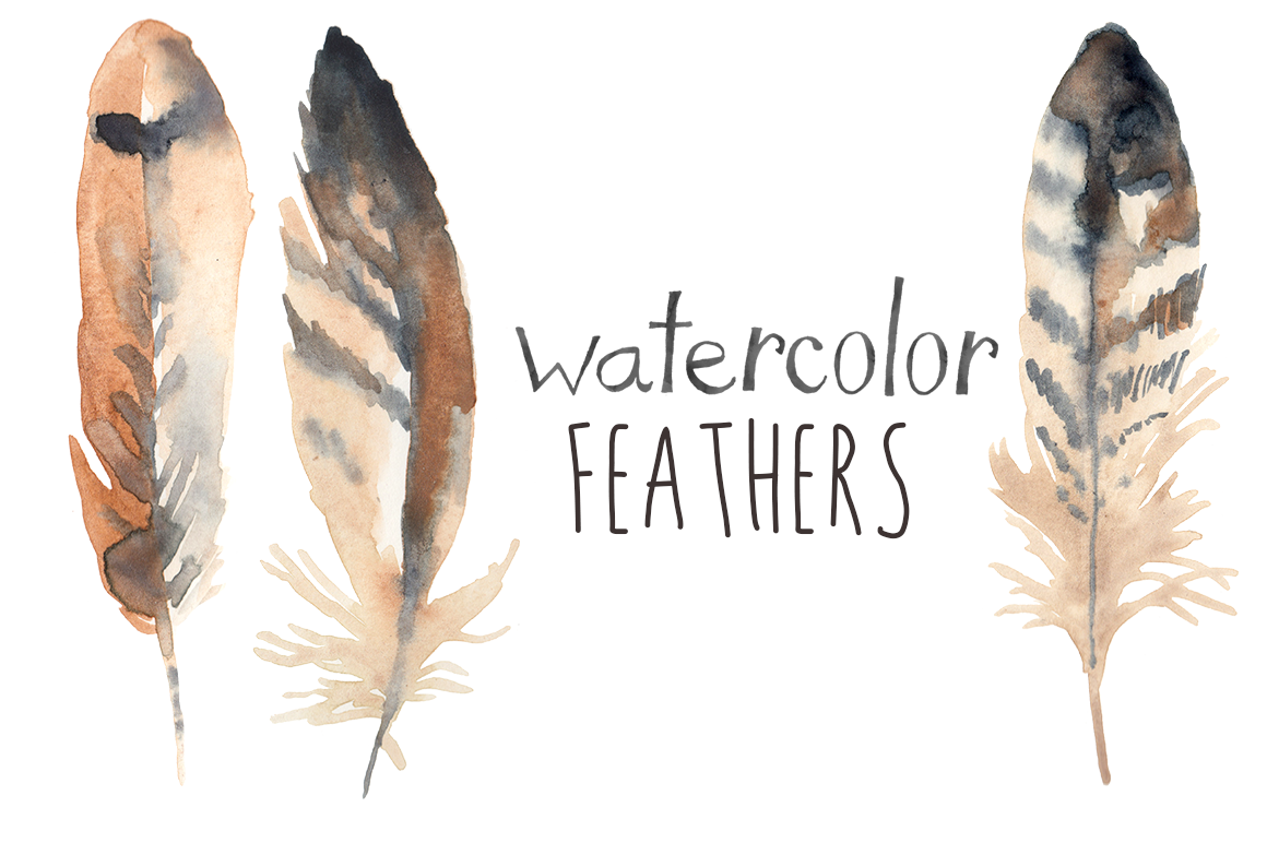 watercolor feathers illustrations on creative market