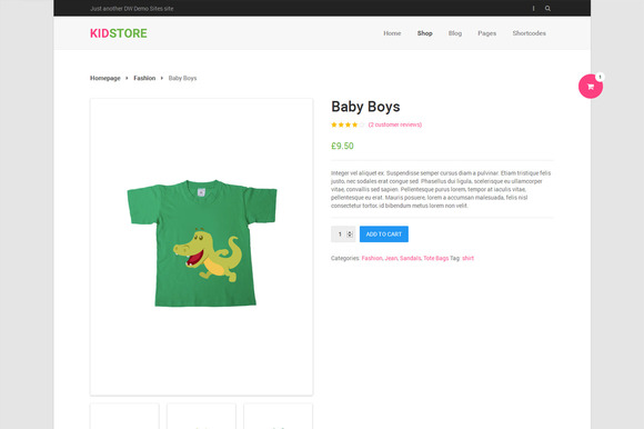 DW KidStore - WP eCommerce Theme