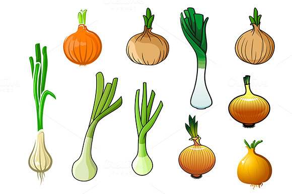 Onion Bulbs And Leek Vegetables