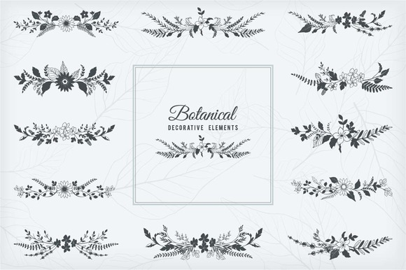 Botanical Decorative Elements