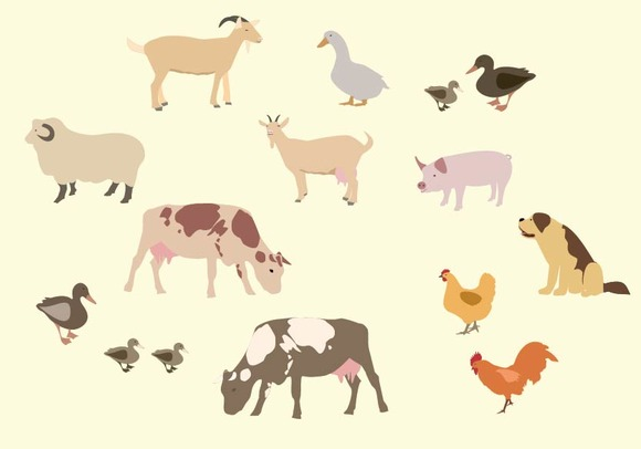 Domestic And Farm Animals Set