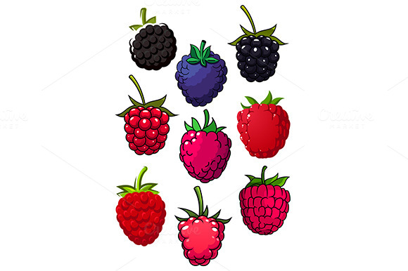 Red Raspberry And Blackberry Fruits