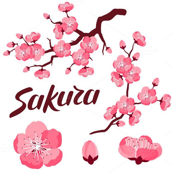 Japanese Sakura Set Of Branches