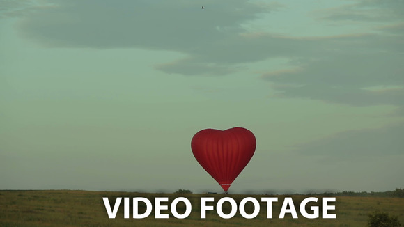 Hot Air Balloon Flying Over Field