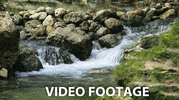 River Stream In The Tropical Forest