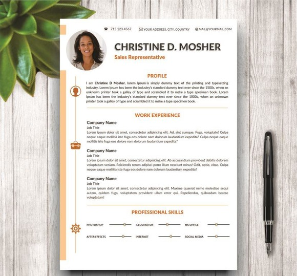 Professional Cv Template 4 Pages Resume Templates On