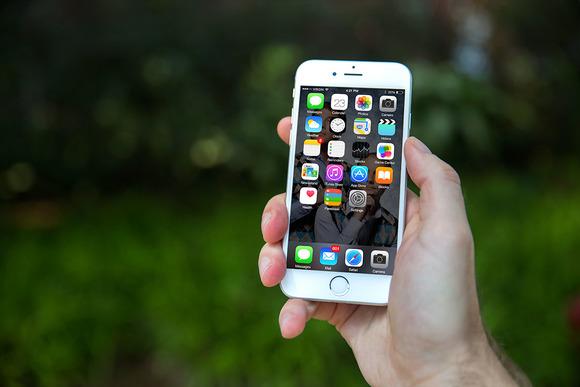 IPhone6 Mockup Shrubs