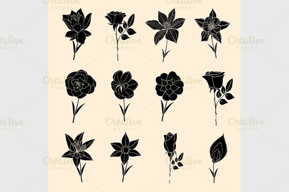 Doodles Flowers Collection