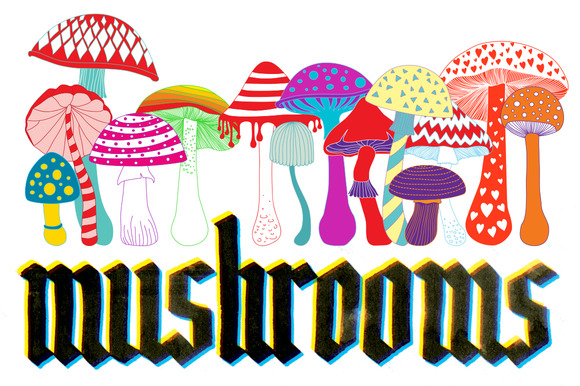 Set Of 14 Mushrooms