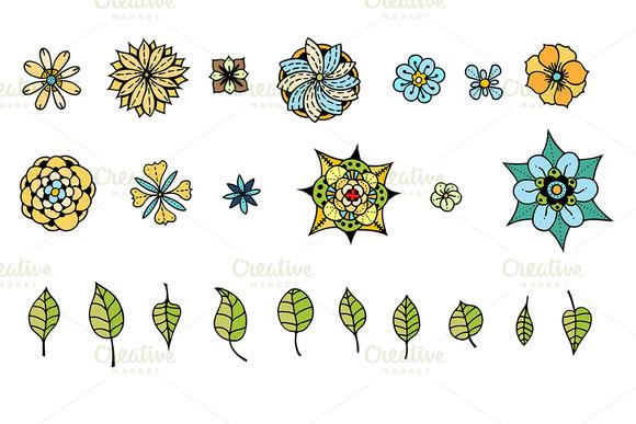Various Flowers Leaves