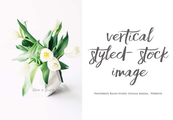 Vertical Styled Stock Image 5