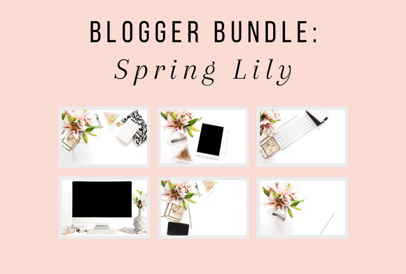 PLSP Spring Lily Blogger Bundle