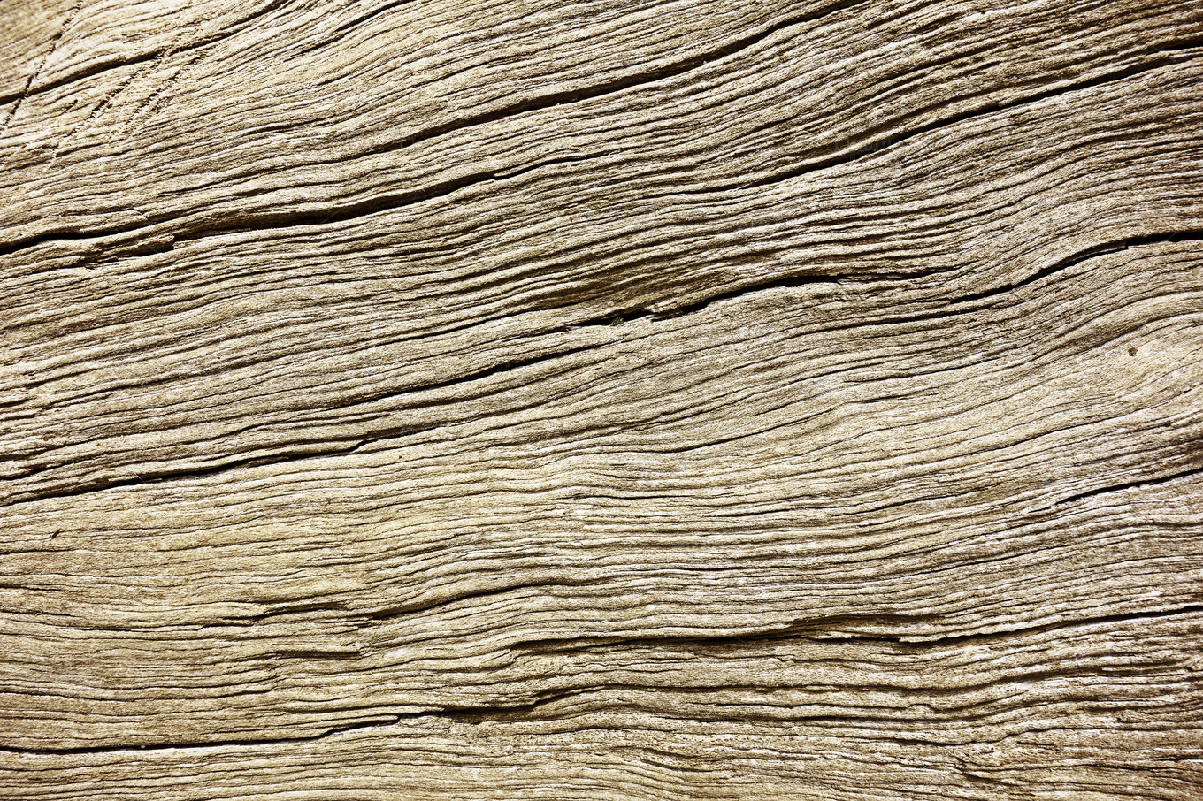 Natural Wood Texture Abstract Photos On Creative Market