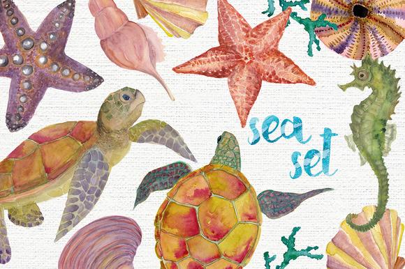 Watercolor Sea Set
