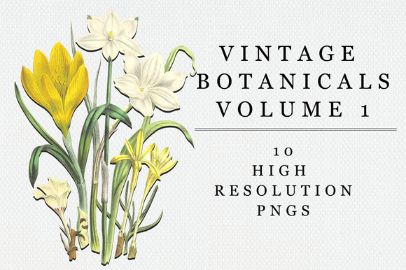 Vintage Botanical Vol 1