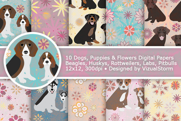 Cute Puppy Dogs And Flowers