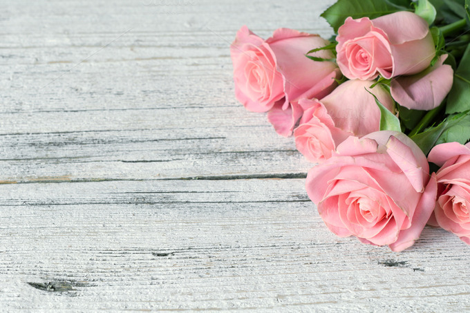 pink roses on white wooden table abstract photos on