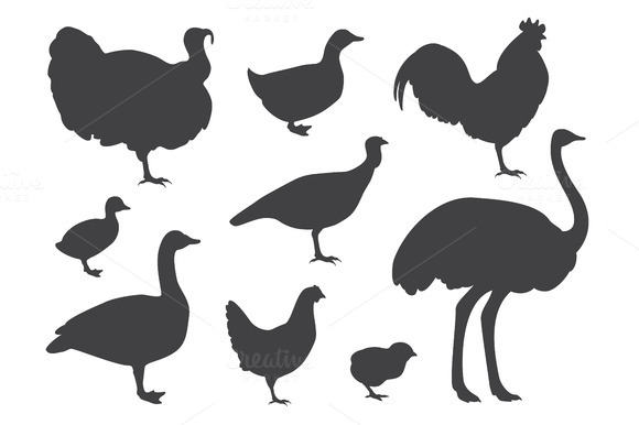 Farm Bird Silhouettes
