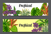 Banners with tropical plant-Graphicriver中文最全的素材分享平台