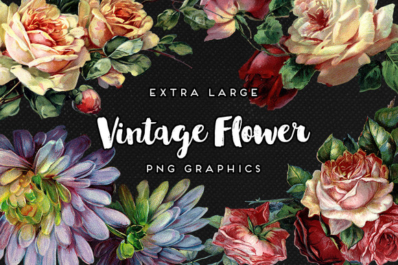 Large Vintage Flower Graphics No 1