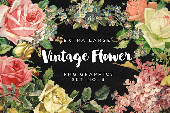 Large Vintage Flower Graphics No. 3 - Objects