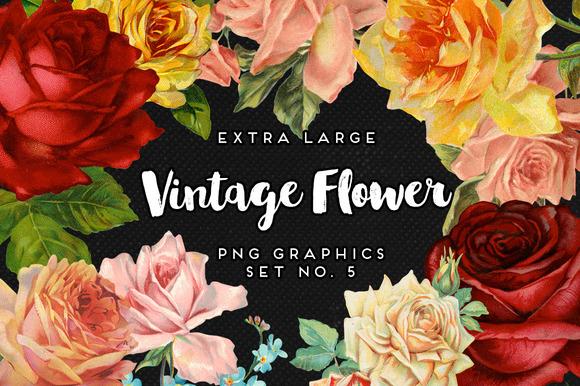 Large Vintage Flower Graphics No 5