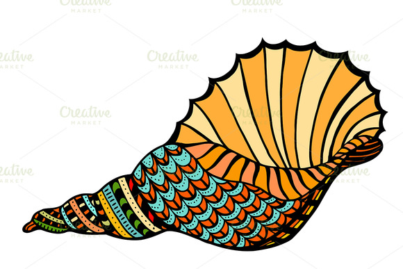 Seashell. Vector illustration.  - Graphics