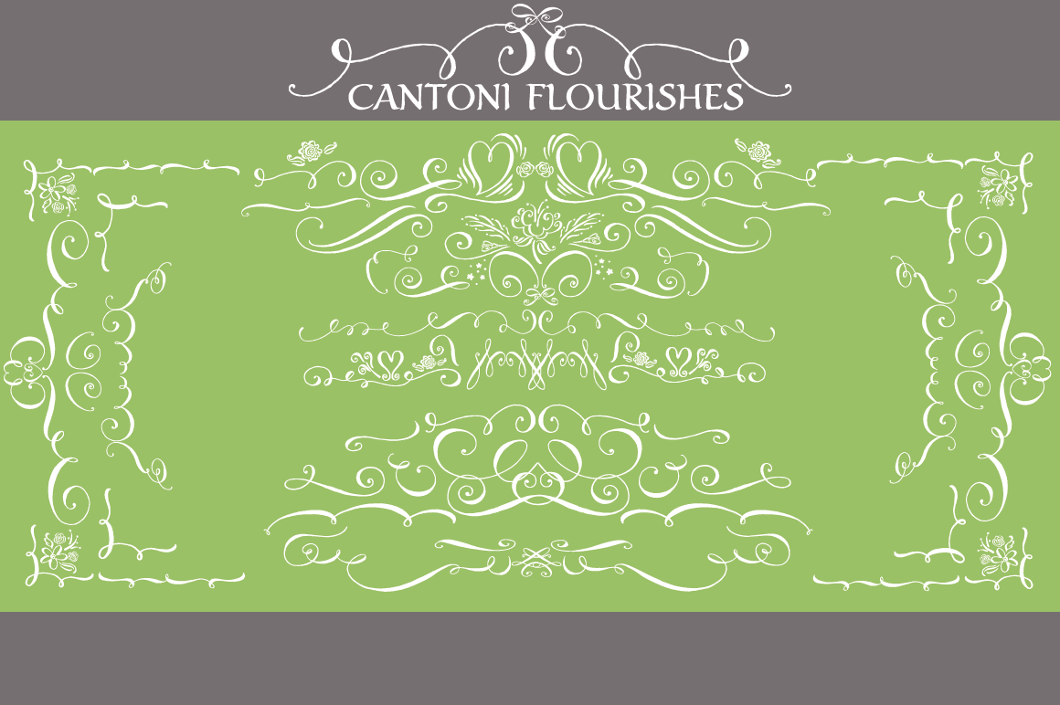 Cantoni Total Design Font Script Fonts On Creative Market