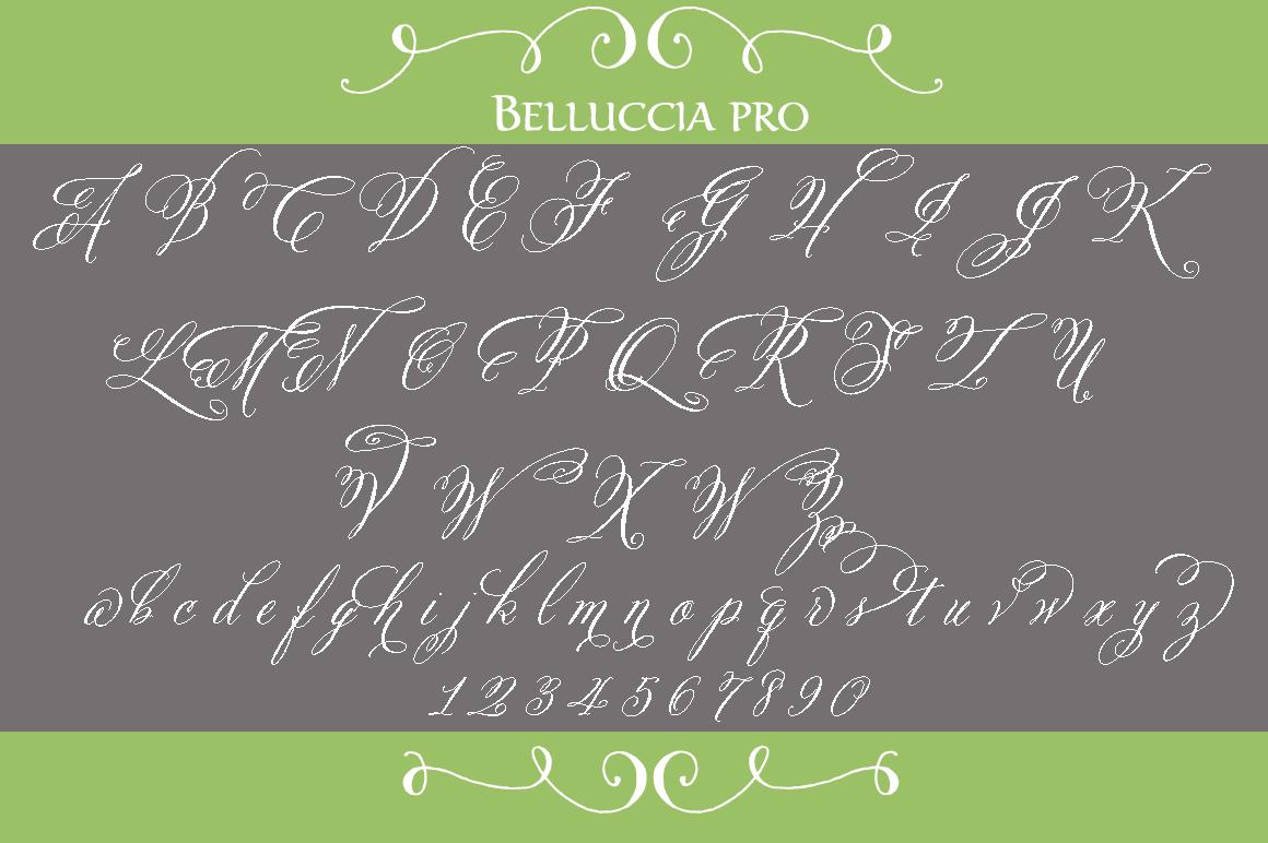 Belluccia Pro Font Script Fonts On Creative Market