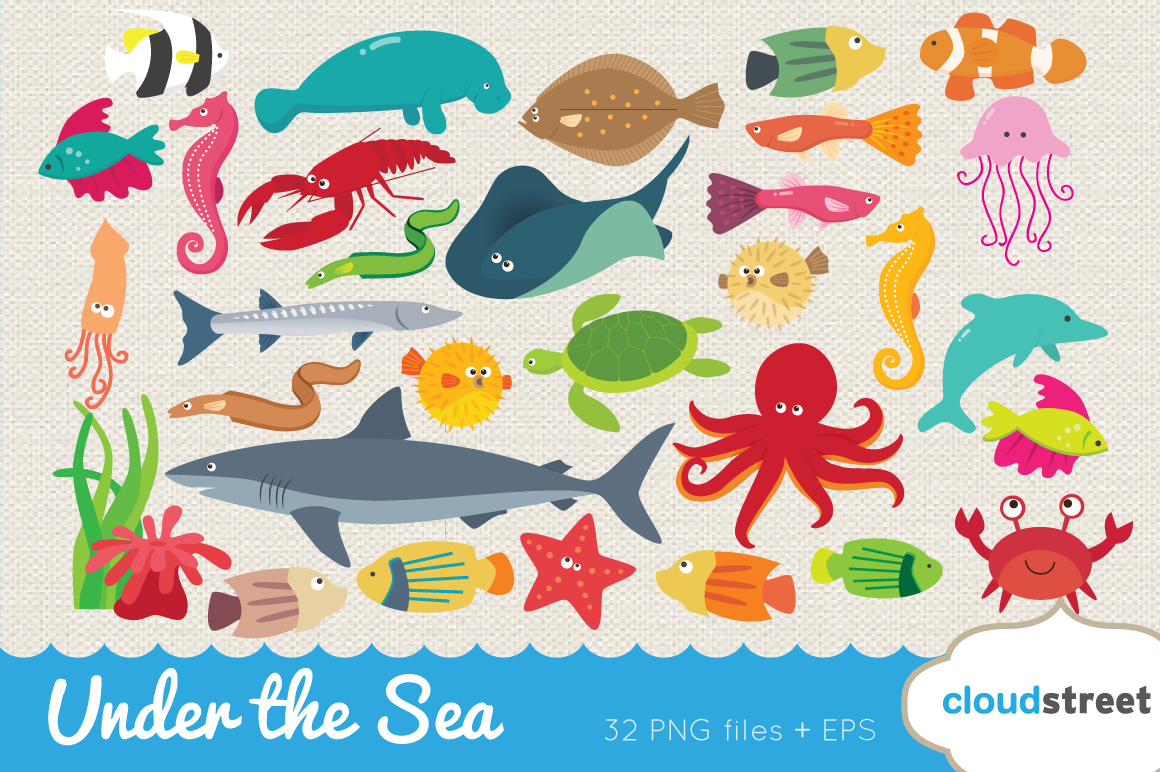 under the sea clipart   illustrations on creative market under the sea clipart bordet under the sea clipart images