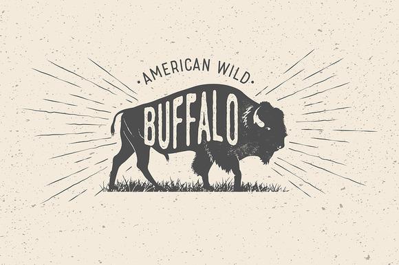 Buffalo. Vintage Vector Label - Illustrations