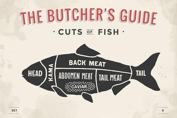 Cut of meat set. Butcher sheme. Fish - Illustrations