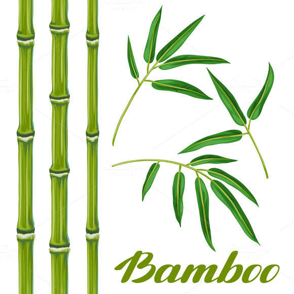 Set Of Bamboo Plants And Leaves