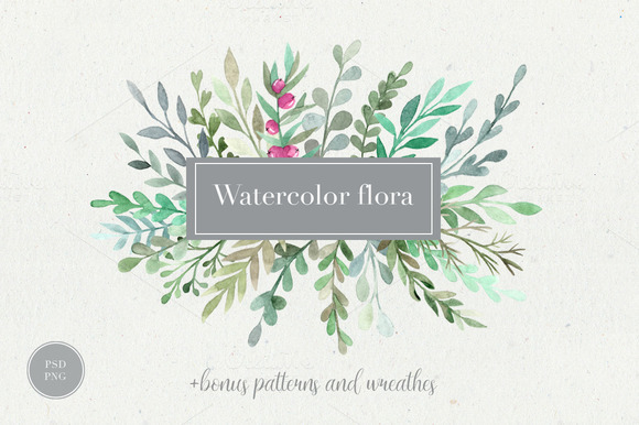 Watercolor flora. Styled collection. - Illustrations