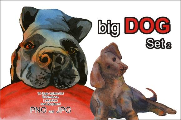 big dog set. Shepherd and Labrador - Illustrations