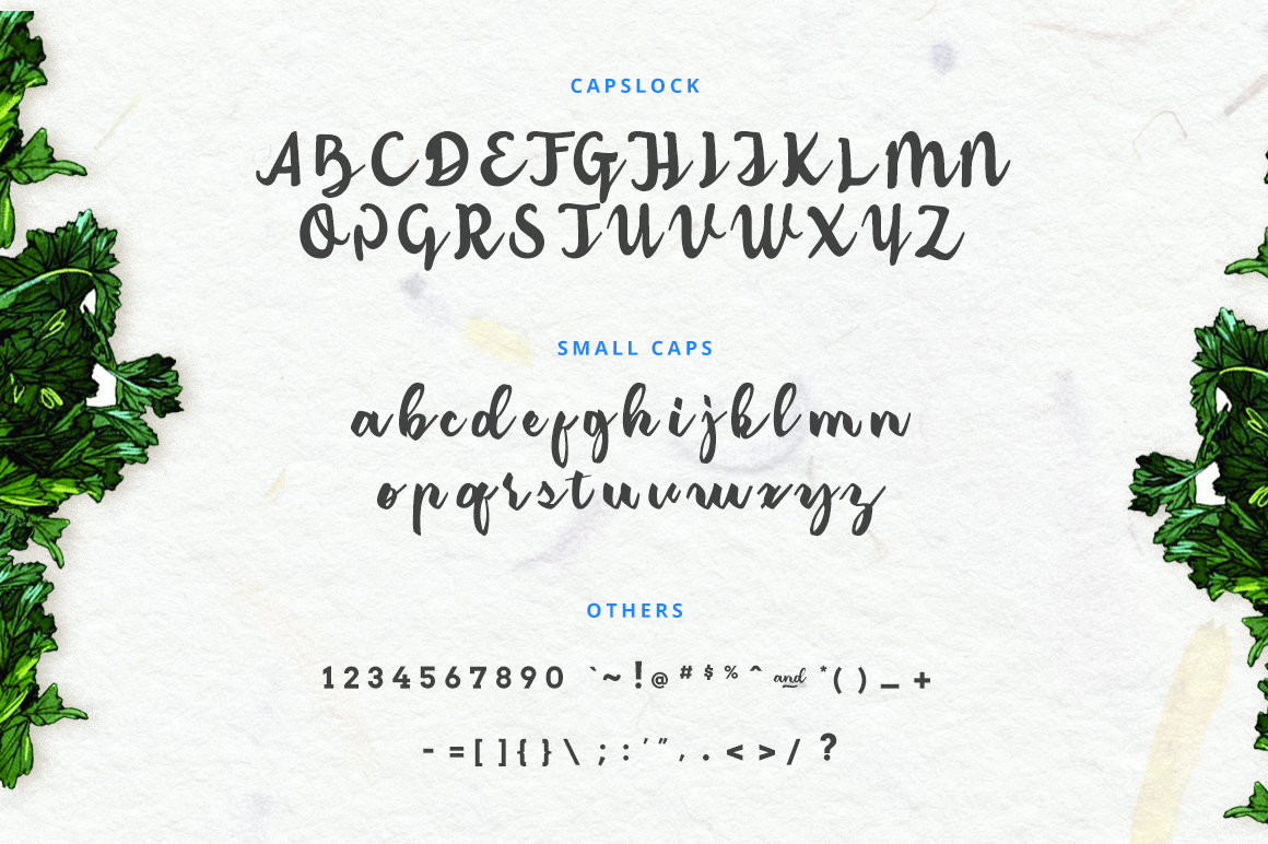 Classic Amerizana Typeface - Script - 3