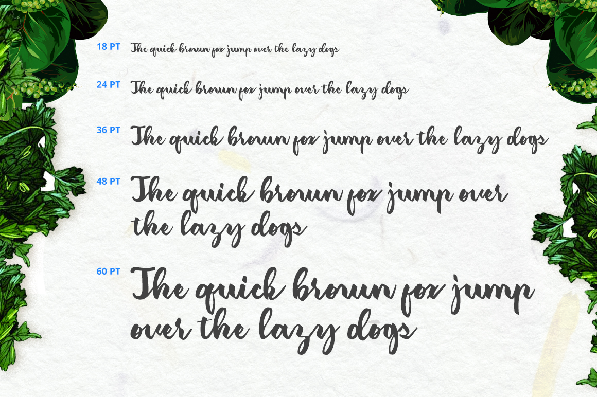 Classic Amerizana Typeface - Script - 4