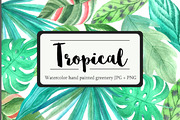 Tropical Watercolor Greener-Graphicriver中文最全的素材分享平台