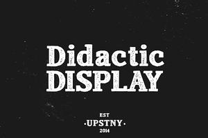 Didactic Display:Textured Slab Serif