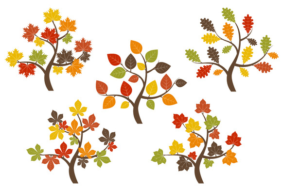 Fall Tree Illustration Fall Trees Clip Art