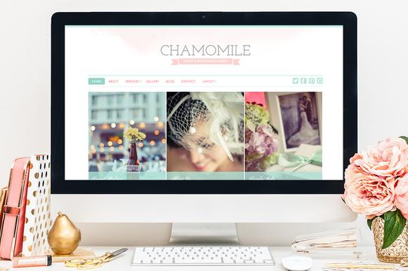 Chamomile WordPress Theme - Business - 1