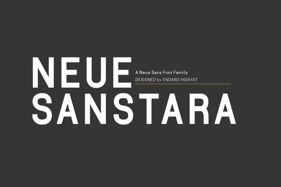 Neuesanstara Font Family 25% OFF