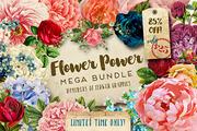 Flower Power Mega Bundle -Graphicriver中文最全的素材分享平台