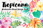 Watercolor Tropical Floral -Graphicriver中文最全的素材分享平台