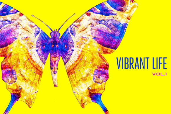 Vibrant Life, Vol. 1 - Objects