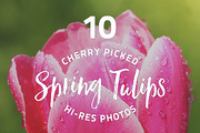 Spring Tulips - photo pack-Graphicriver中文最全的素材分享平台